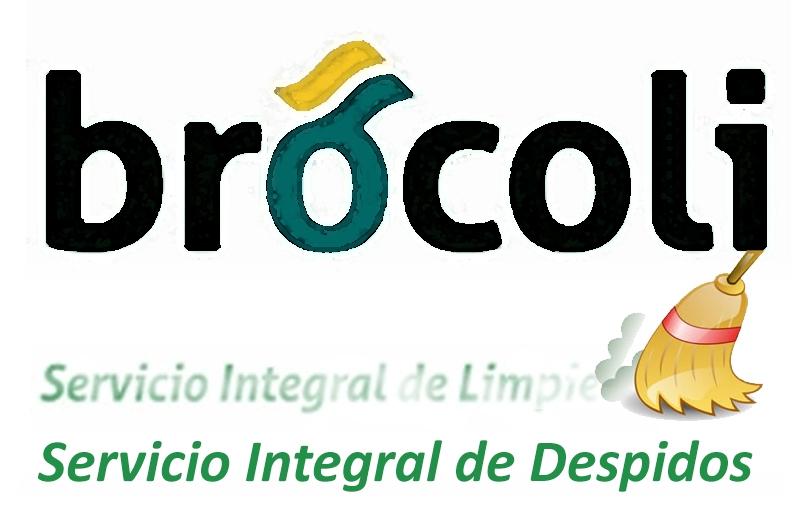 Concentraciones contra los despidos en Limpiezas Brócoli